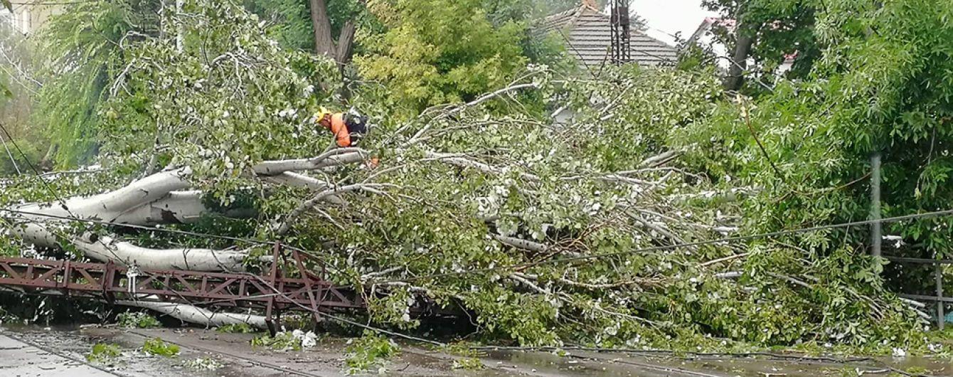 Из-за атаки стихии в Украине обесточены 129 населенных пунктов, больше всего - на Киевщине