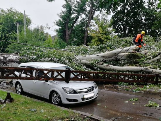 Зламані дерева, зірвані дахи та потрощені авто: Миколаєвом пронеслася негода