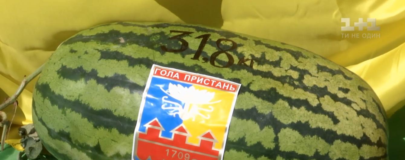 На Херсонщине определили самый большой арбуз сезона - его вес достиг почти 32 килограммов
