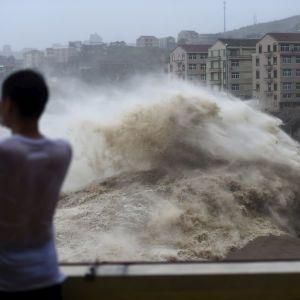 Майже 300 скасованих авіарейсів та припинення руху автобусів. Японія готується зустріти тайфун