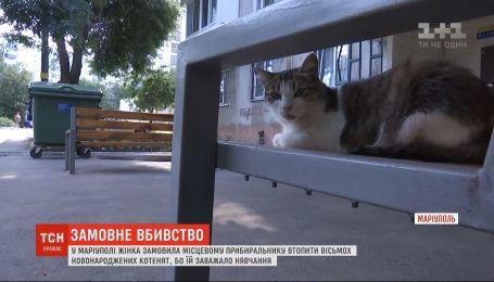 Женщина заказала уборщику утопить 8 новорожденных котят из-за их мяуканья