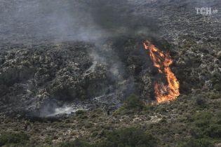 В Греции задержали предполагаемых поджигателей, из-за которых развернулись масштабные лесные пожары