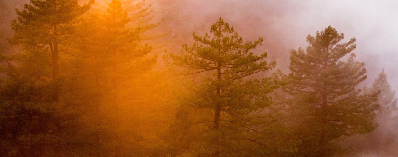 МЗС попередило українців обмежити пересування районами Греціїу зв'язку зі спекою та загрозою пожеж