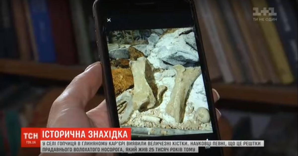 На Винниччине во время добычи глины нашли кости гигантского доисторического животного - мохнатого носорога