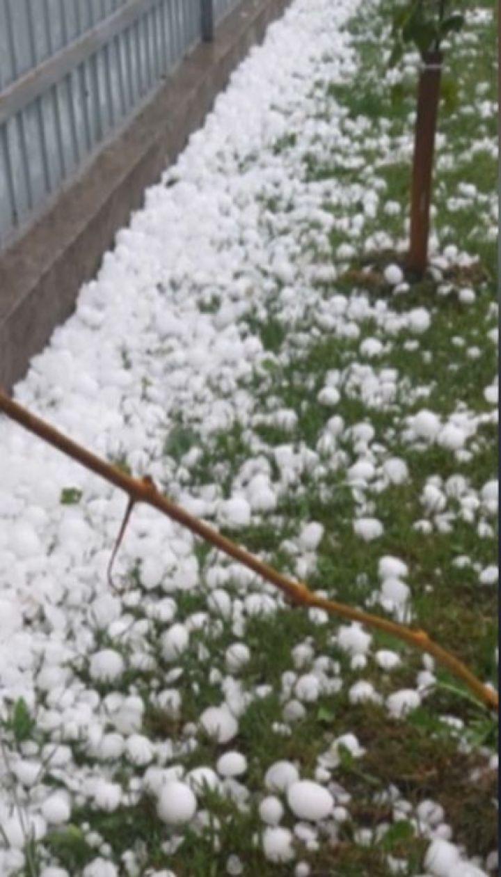 Негода понищила десятки дахів та автівок на Буковині