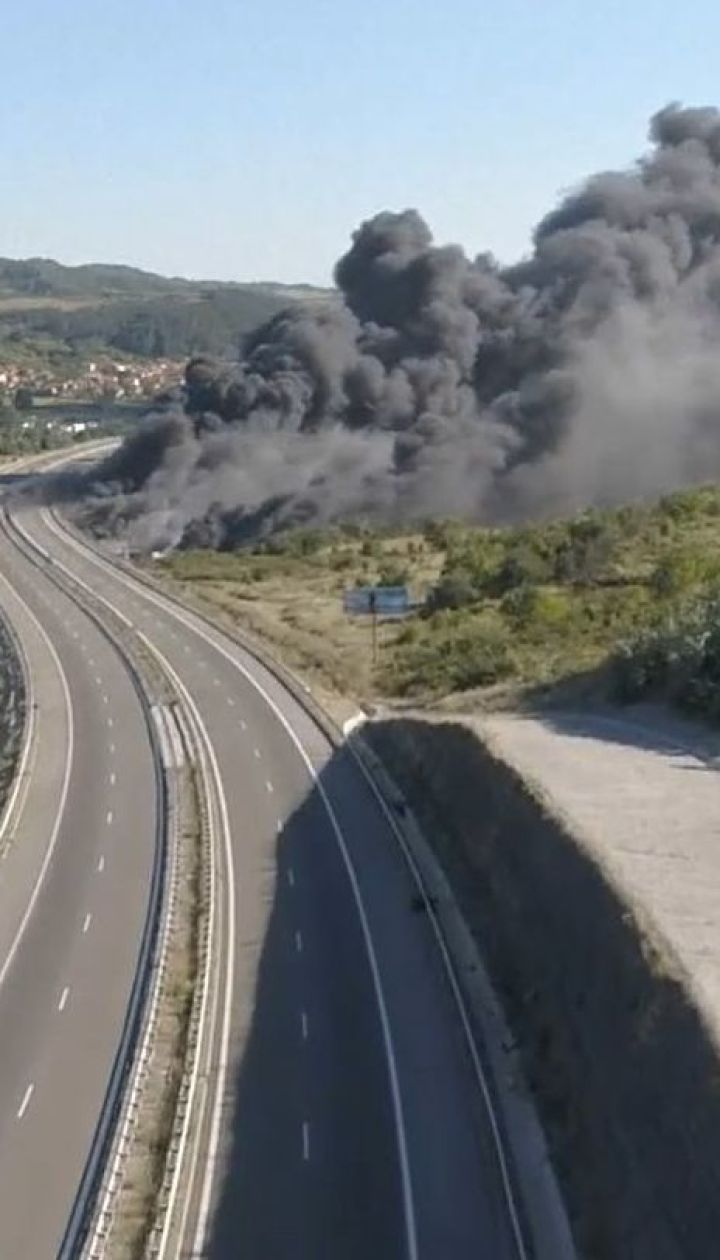 На греческих островах Эвиа пожарные не могут потушить лесные возгорания