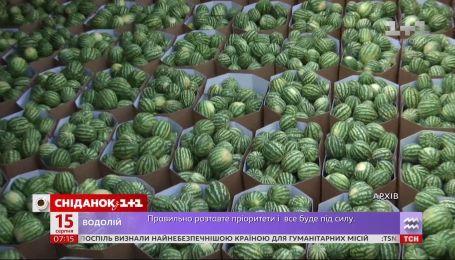 Баржа с херсонскими арбузами отправляется в Киев - Экономические новости