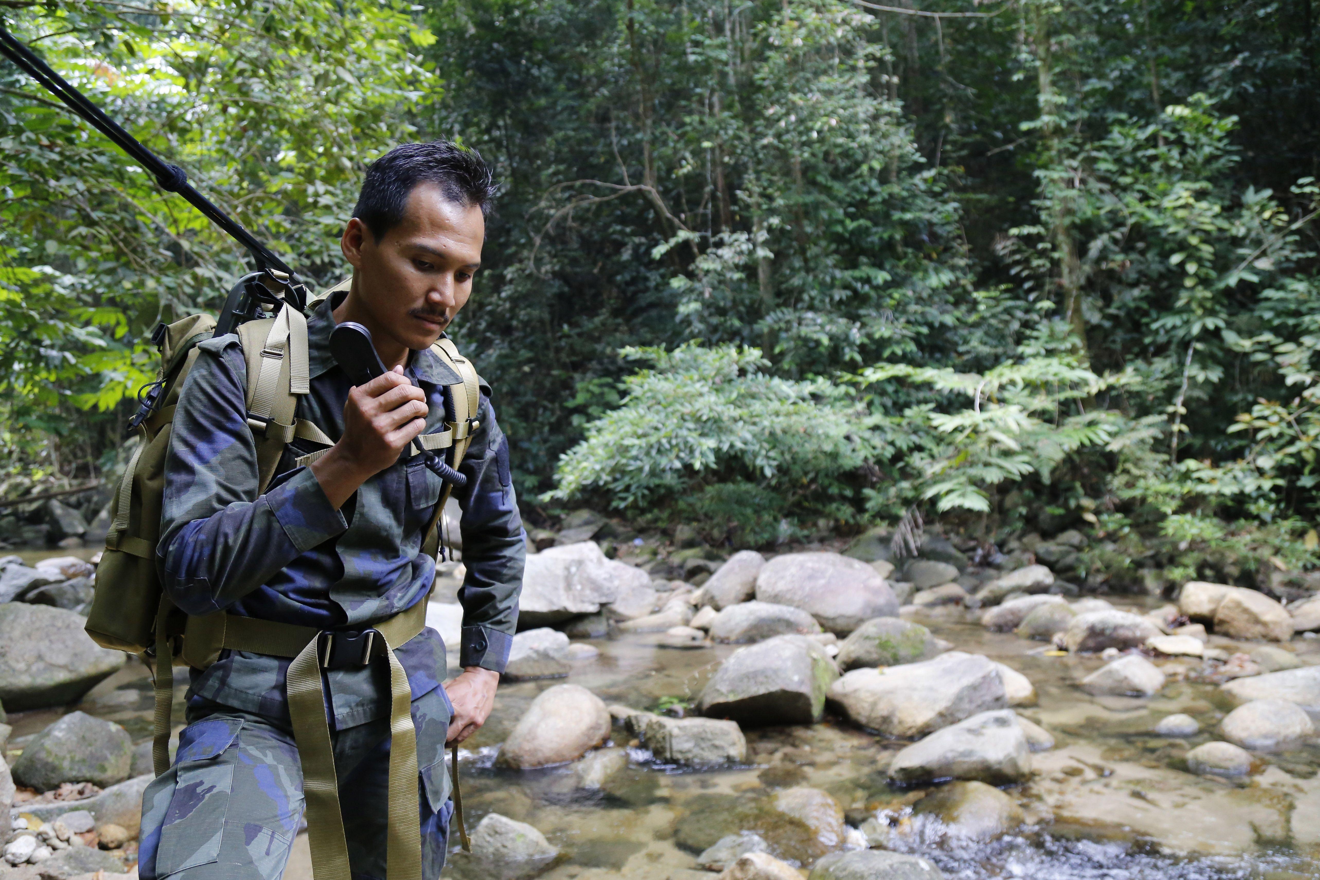 зникнення нори куорин, малайзія_3