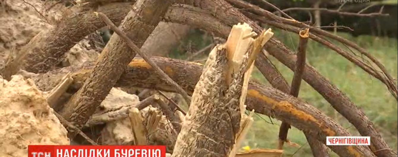 """""""Божьего мира видно не было"""". По Черниговской области пронесся ураган: десятки поваленных деревьев и разрушенных домов"""