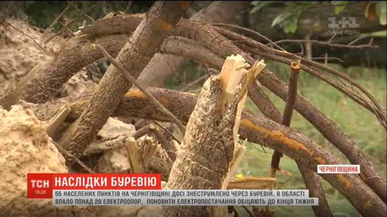 """""""Божого світу видно не було"""". Чернігівщиною пронісся буревій: десятки повалених дерев і зруйнованих будинків"""