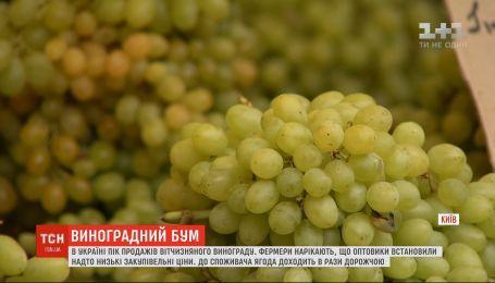 В Украине пик продаж отечественного винограда
