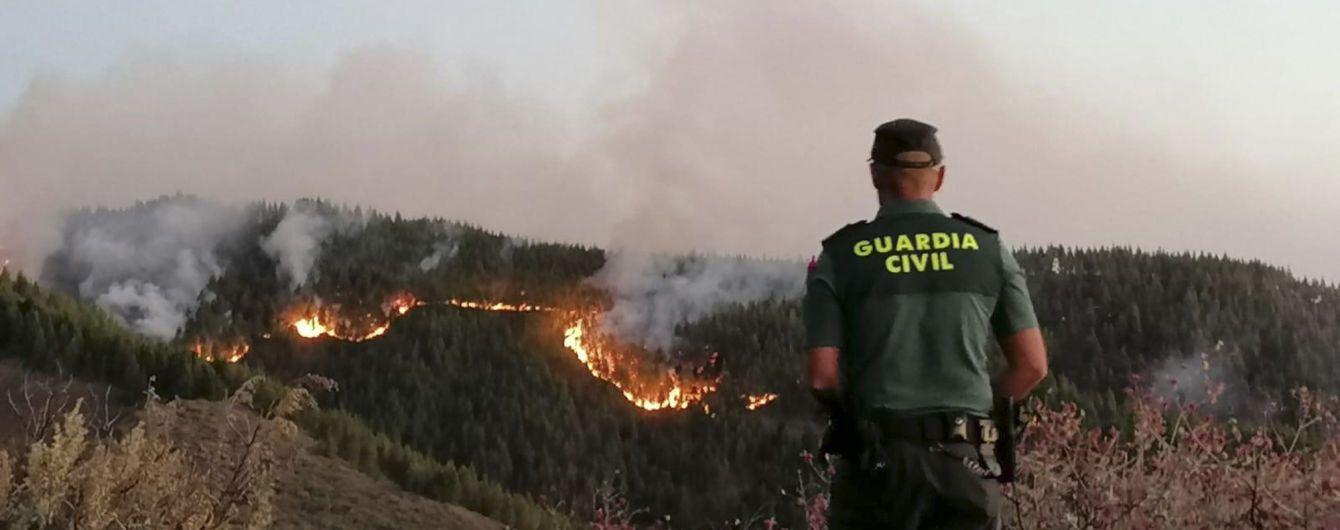 На Канарських островах потужно палає ліс