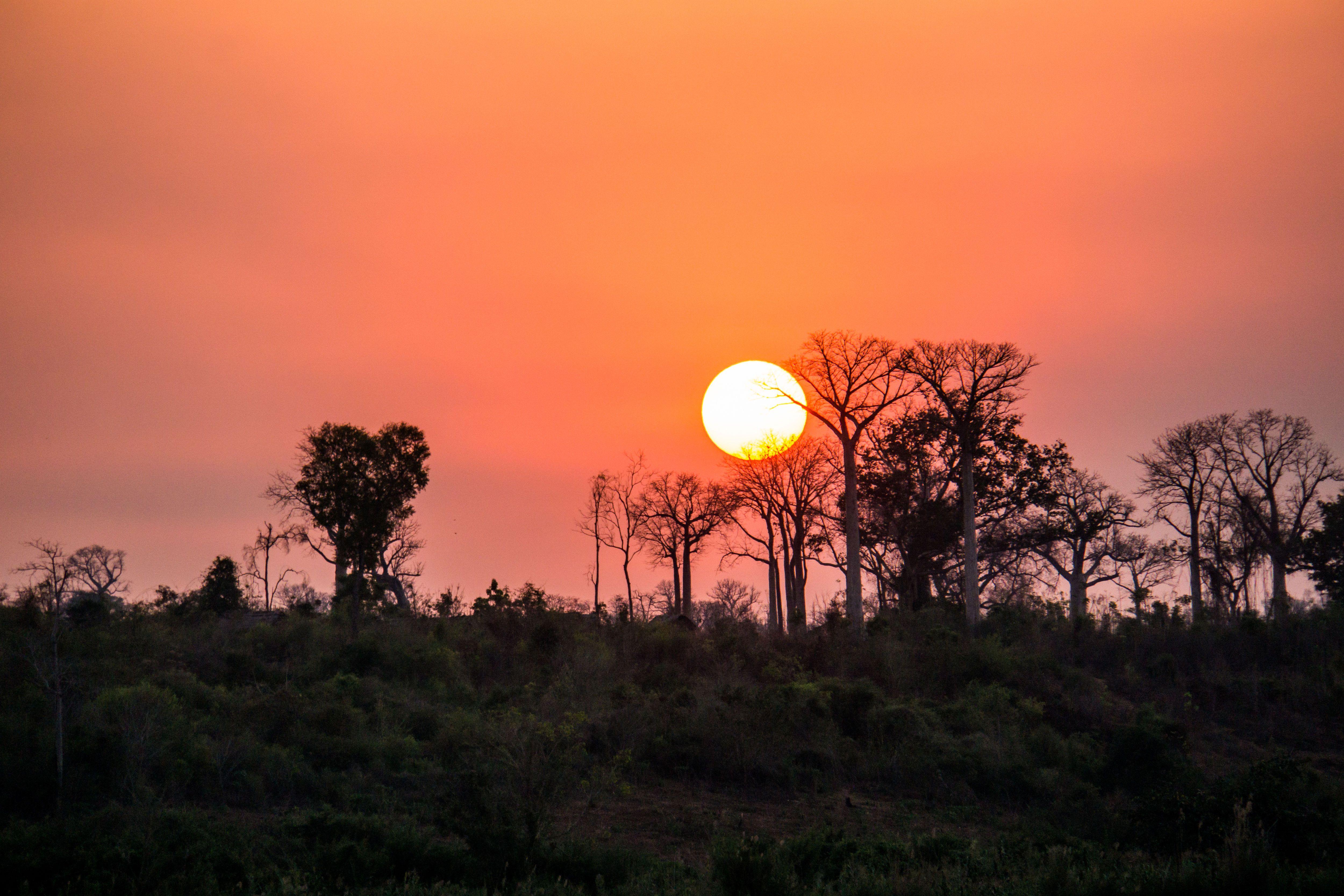 Мадагаскар, для блогів_4