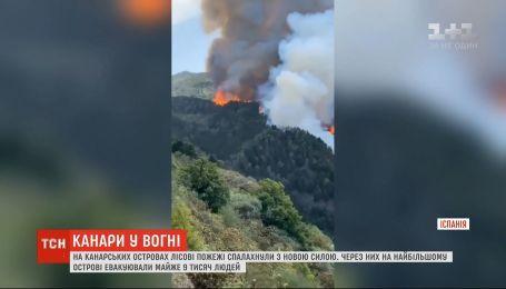 На Канарах более 9 тысяч человек переехали во временные убежища из-за лесных пожаров