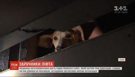 6 часов в лифте просидели 4 человека и собака во Львове - службы на звонки не реагировали