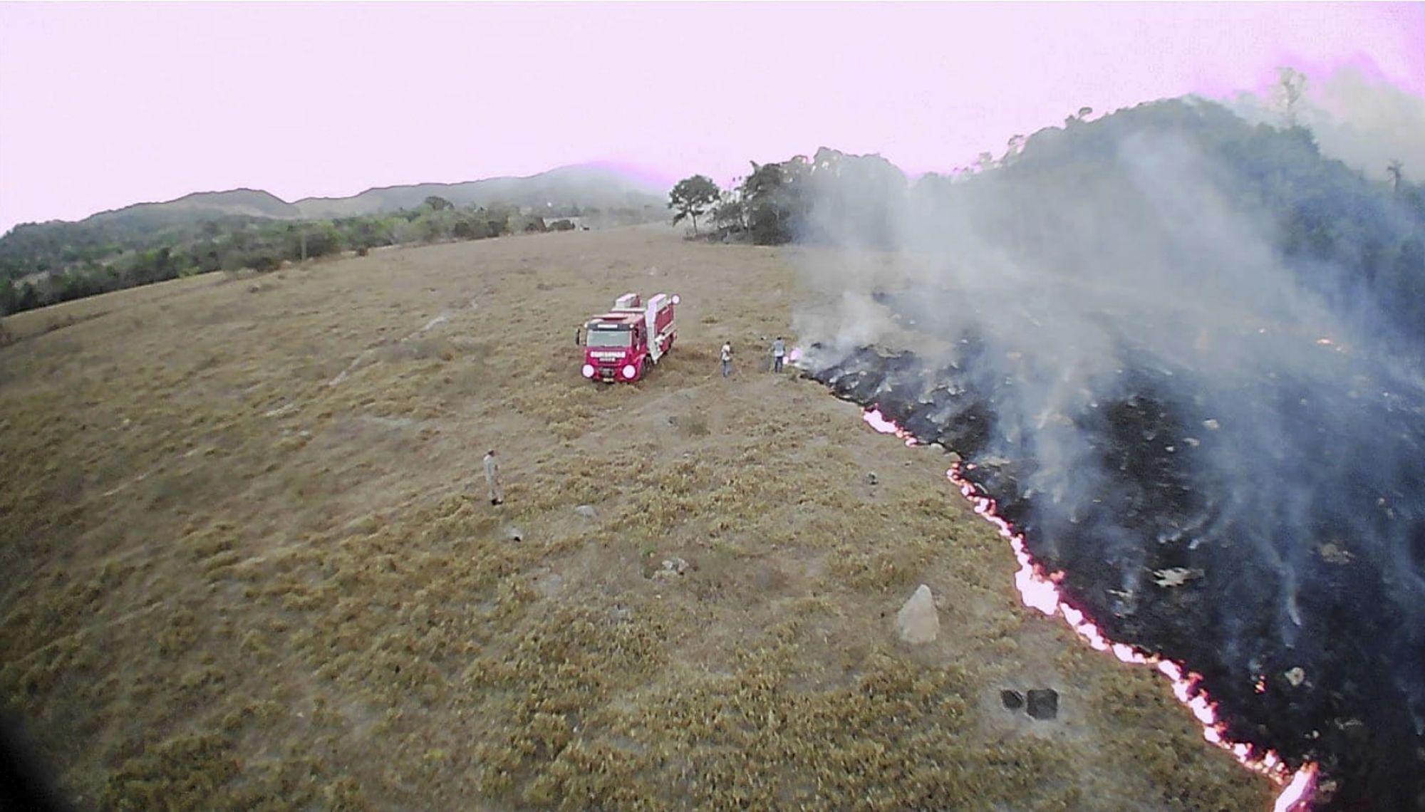 Лісові пожежі, вогонь_1