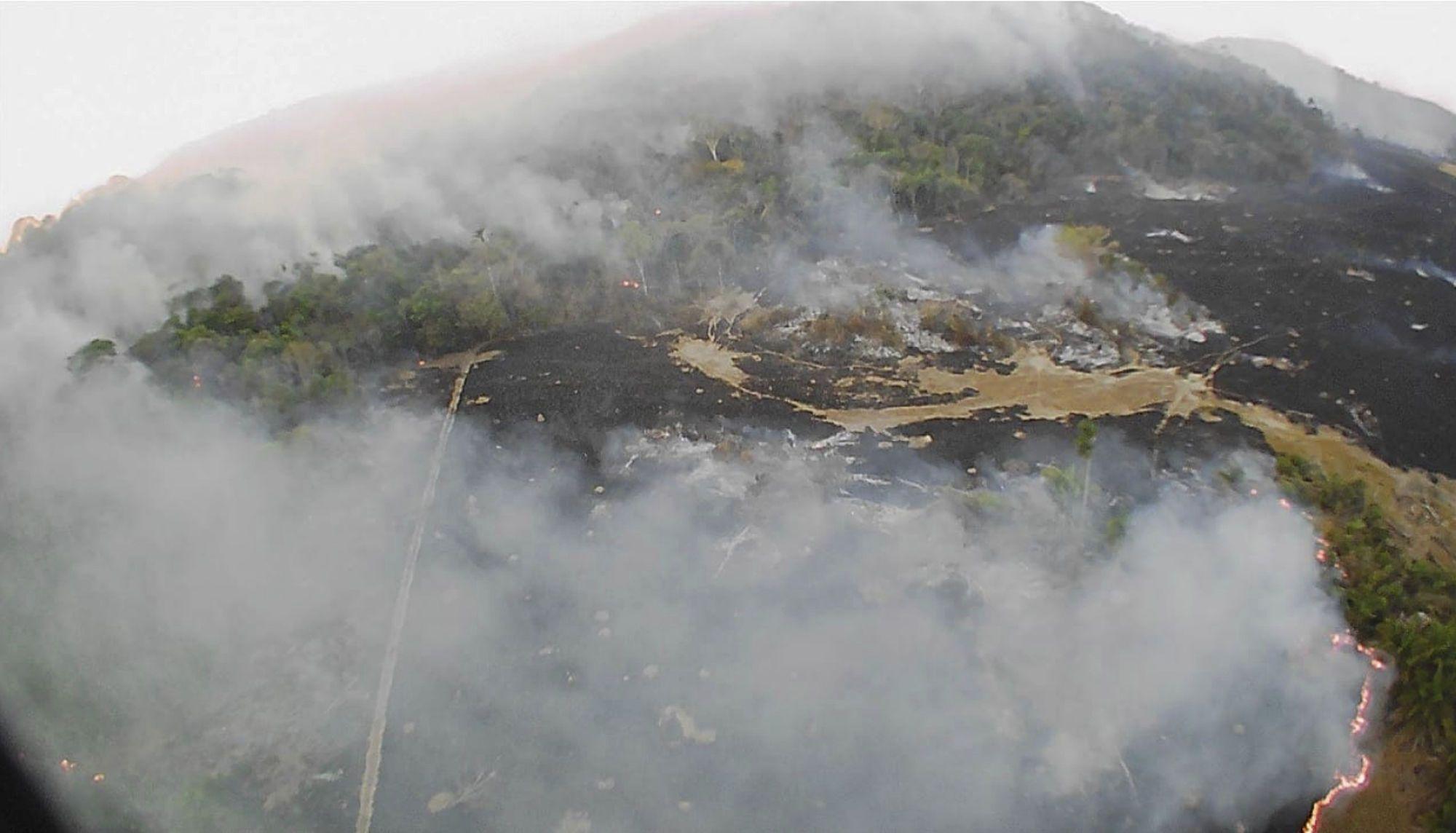Лісові пожежі, вогонь_2