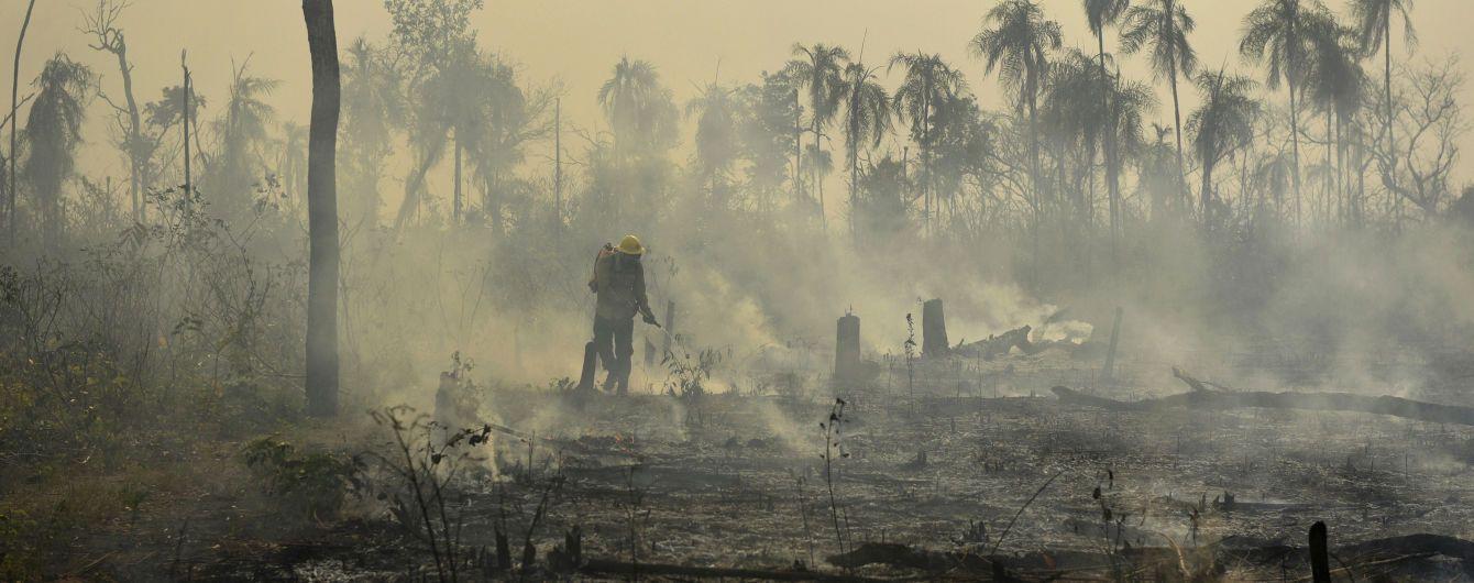 """""""Легкие планеты"""" превращаются в пепелище. Кто виноват в невиданных пожарах амазонских лесов"""