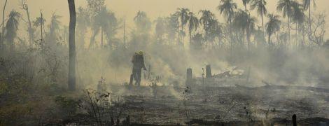 """""""Легені планети"""" перетворюються на згарище. Хто винен у небачених пожежах амазонських лісів"""