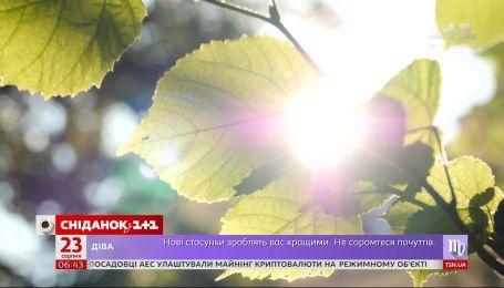 Спекотно і сонячно: якою буде погода в Україні на вихідні
