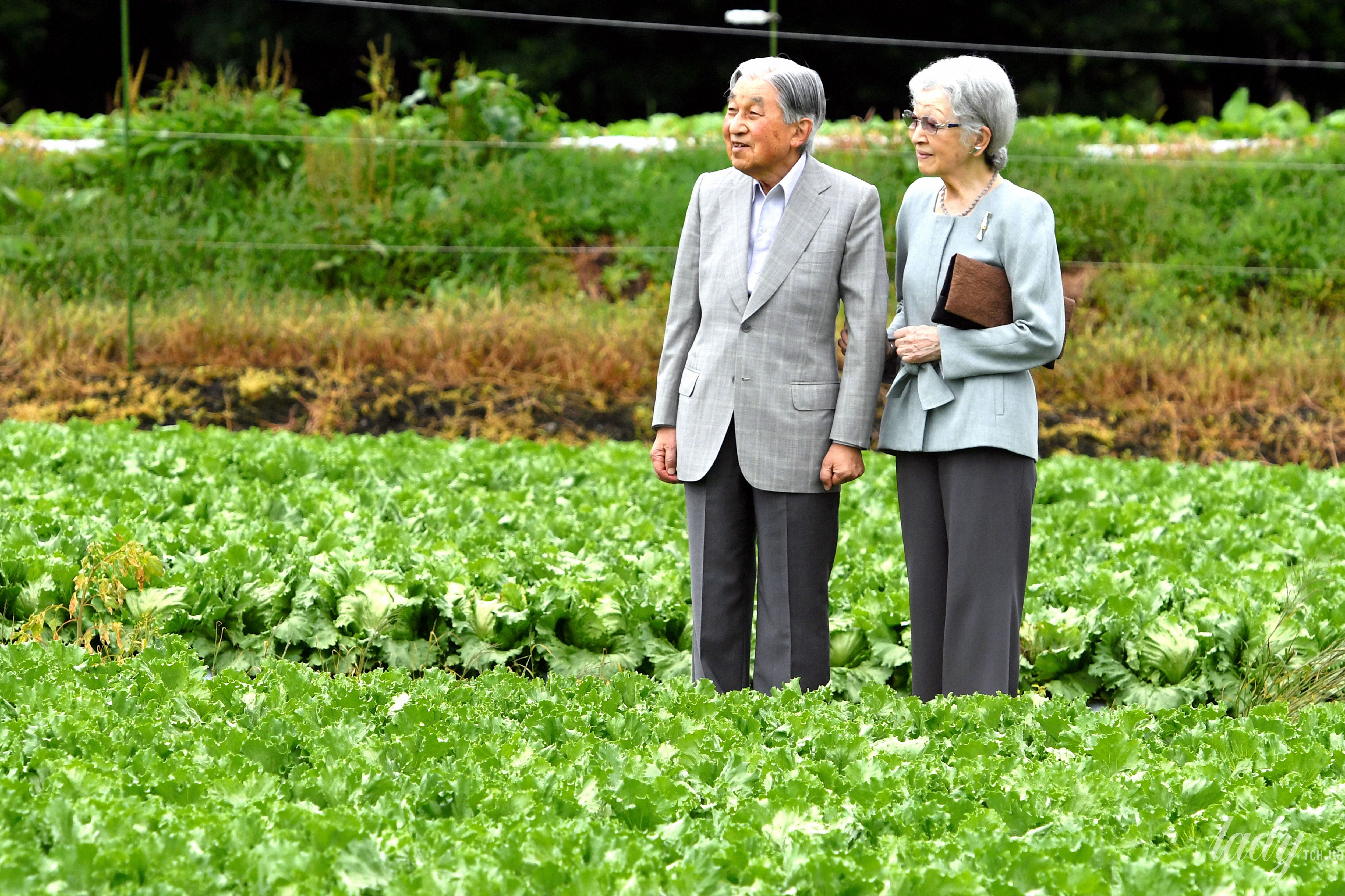 Почетный император Акихито и императрица Митико