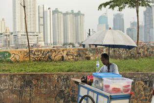 Индонезия определила место строительства новой столицы