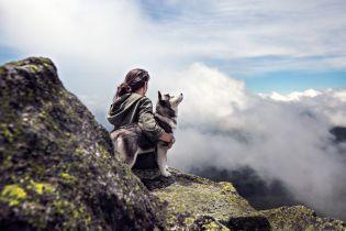 Владельцы собак меньше других рискуют преждевременно умереть
