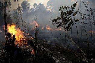 Пожары в Амазонии. В Бразилии отказались от финпомощи страны G7 и упрекнули сгоревшим Нотр-Дамом