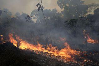 Президент Бразилии обещает взять 20 млн помощи на борьбу с пожарами, если Макрон извинится