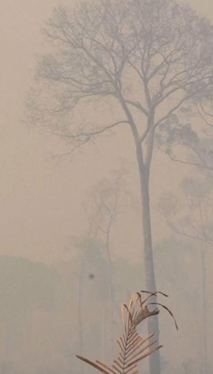 Уряд Бразилії відмовився від допомоги країн G7 у боротьбі з лісовими пожежами