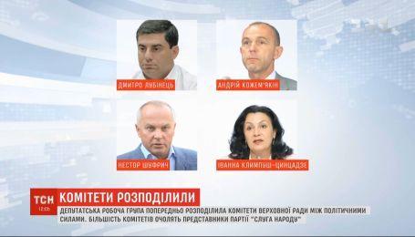 Робоча депутатська група розподілила комітети парламенту між політичними силами