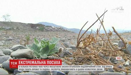 В ряде регионов Чили объявили чрезвычайное положение из-за экстремальной засухи
