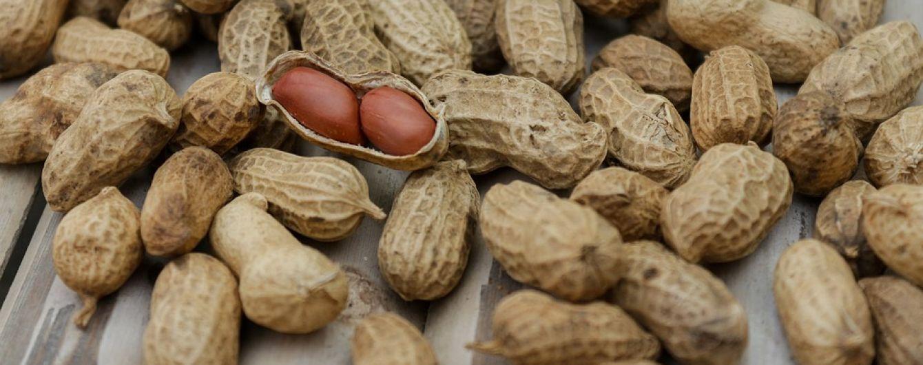 В Україні набирає популярності вирощування арахісу: що відомо