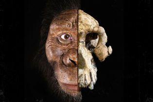 Самый древний предок человека в истории. Ученые показали лицо клыкастого австралопитека, что жил 3,8 млн лет назад
