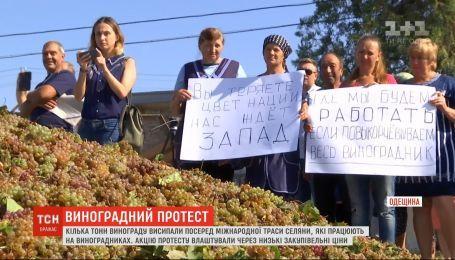 Селяне перекрыли трассу Одесса - Болград из-за крайне низких закупочных цен на виноград