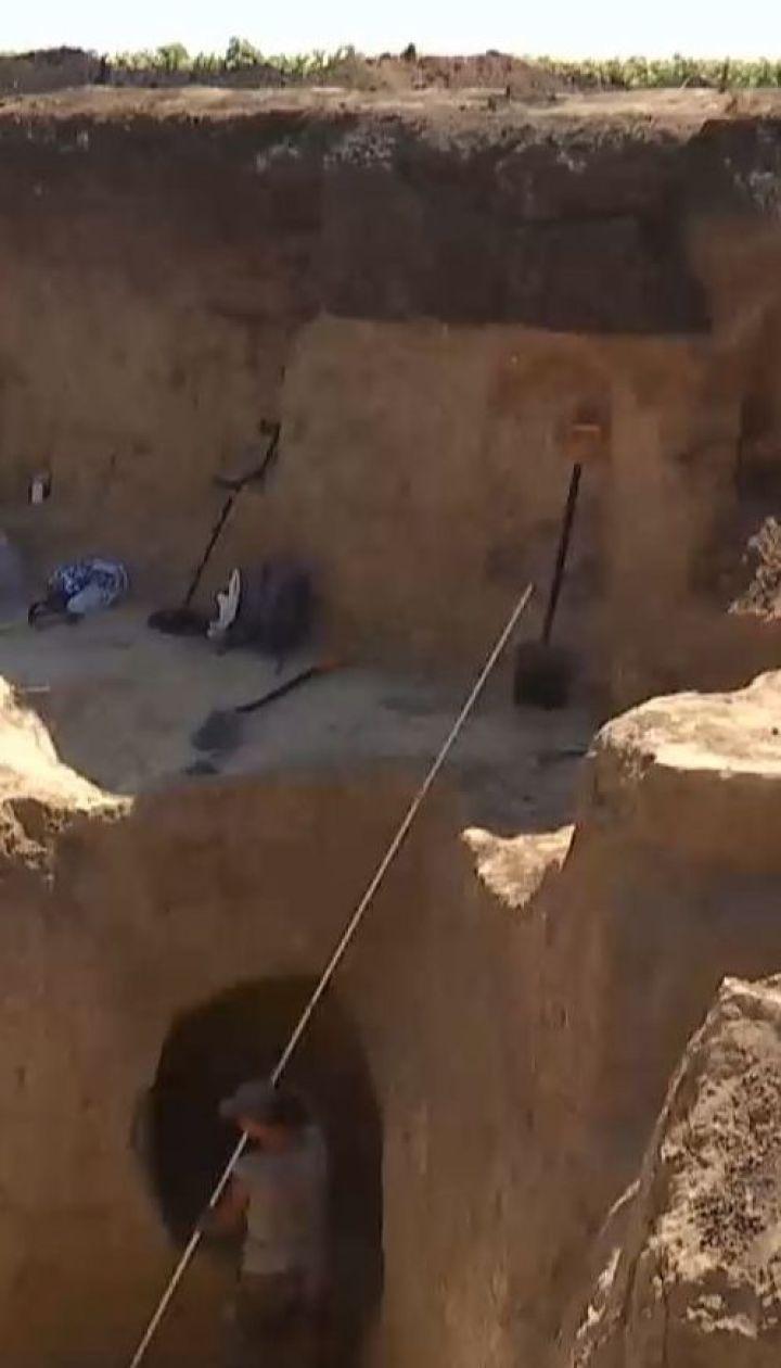 В скифском кургане нашли золотые украшения и остатки древних амфор