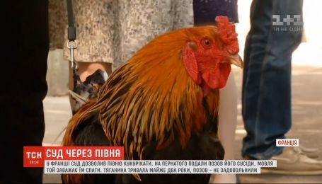 Во Франции суд разрешил кукарекать петуху, на которого жаловались жители маленького городка