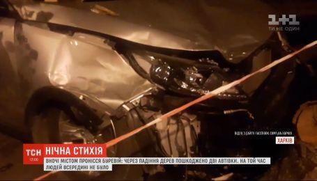 В Харькове мощный ураган повалил деревья и разбил авто