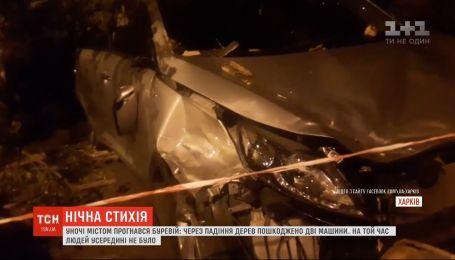Авто побило вследствие урагана, который пронесся в Харькове