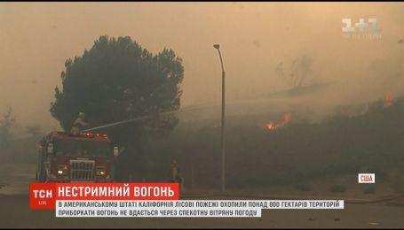 В Калифорнии горят 800 гектаров территорий: власти объявили обязательную эвакуацию людей
