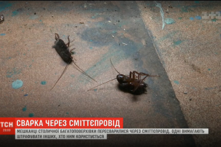 Тараканы и вонь. Жители киевской многоэтажки перессорились из-за мусоропровода в подъезде