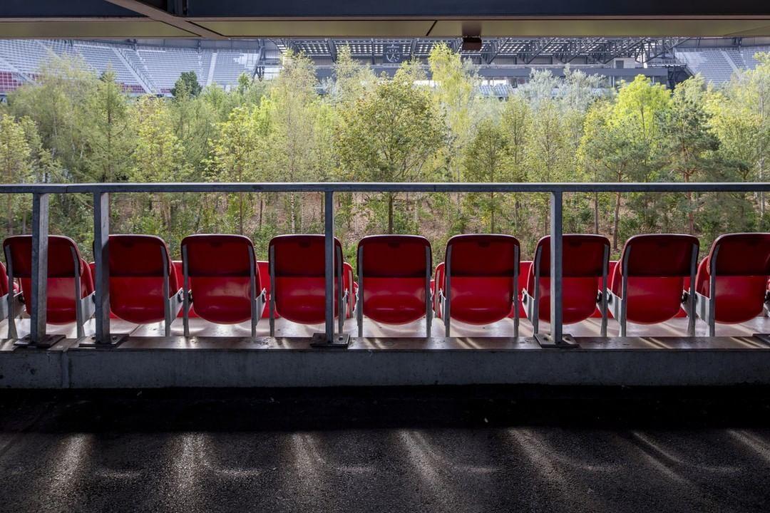 інсталіція Клауса Літтманна ліс на стадіоні_1