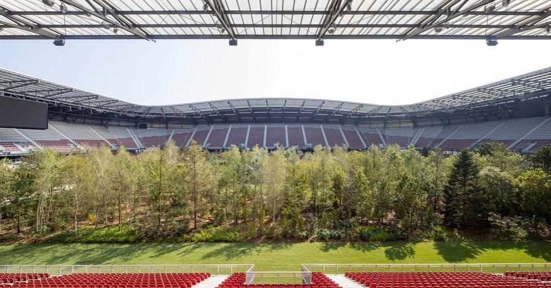 інсталіція Клауса Літтманна ліс на стадіоні_8