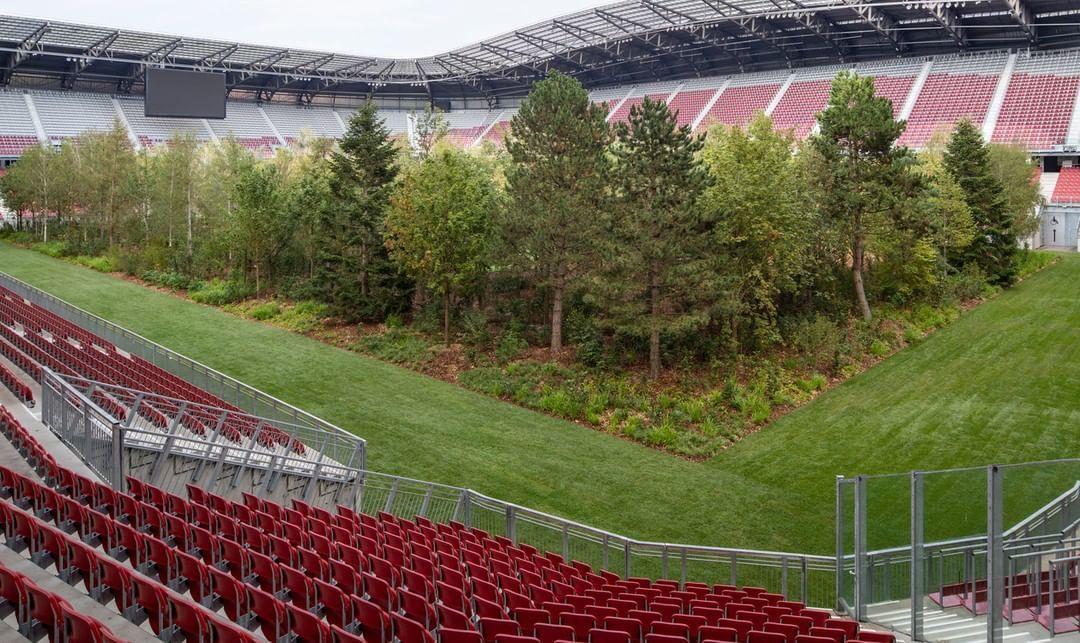 інсталіція Клауса Літтманна ліс на стадіоні_4