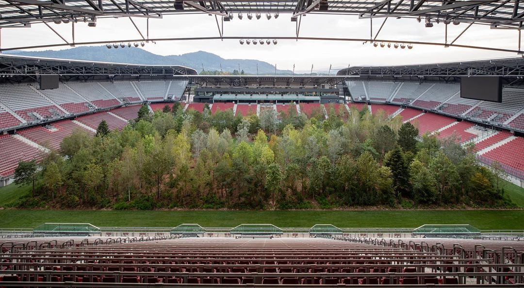 інсталіція Клауса Літтманна ліс на стадіоні_5