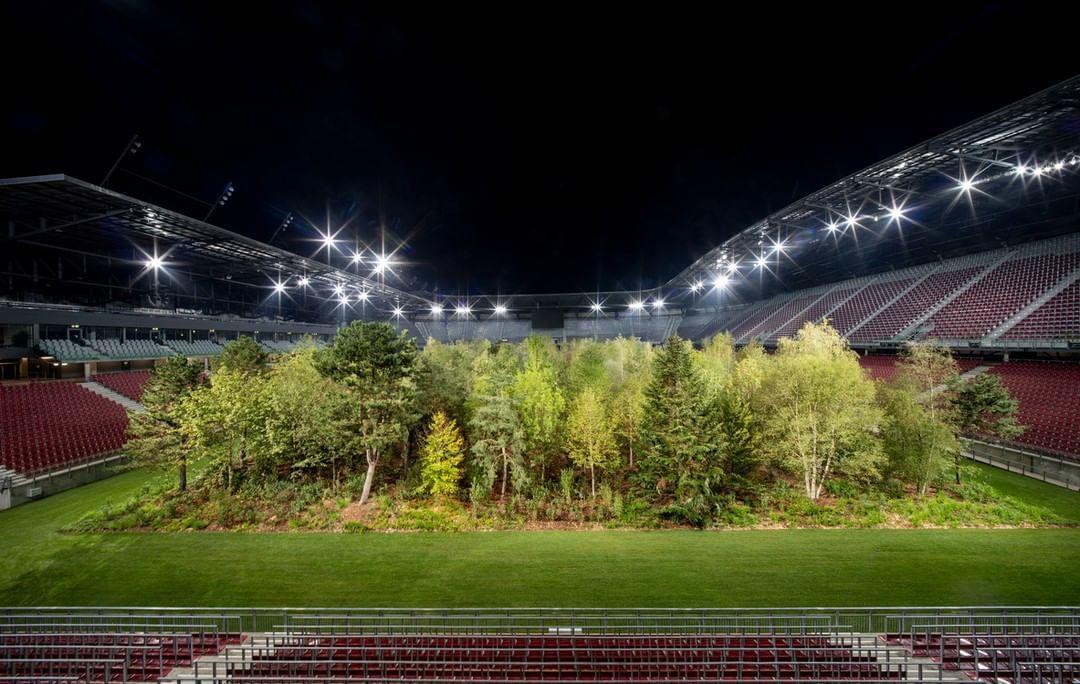 інсталіція Клауса Літтманна ліс на стадіоні_3