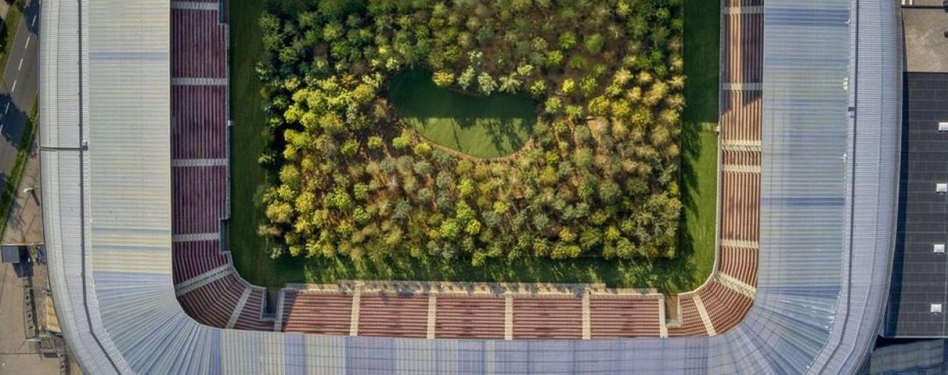 В Австрии высадили лес посреди футбольного стадиона, чтобы привлечь внимание к вырубке деревьев