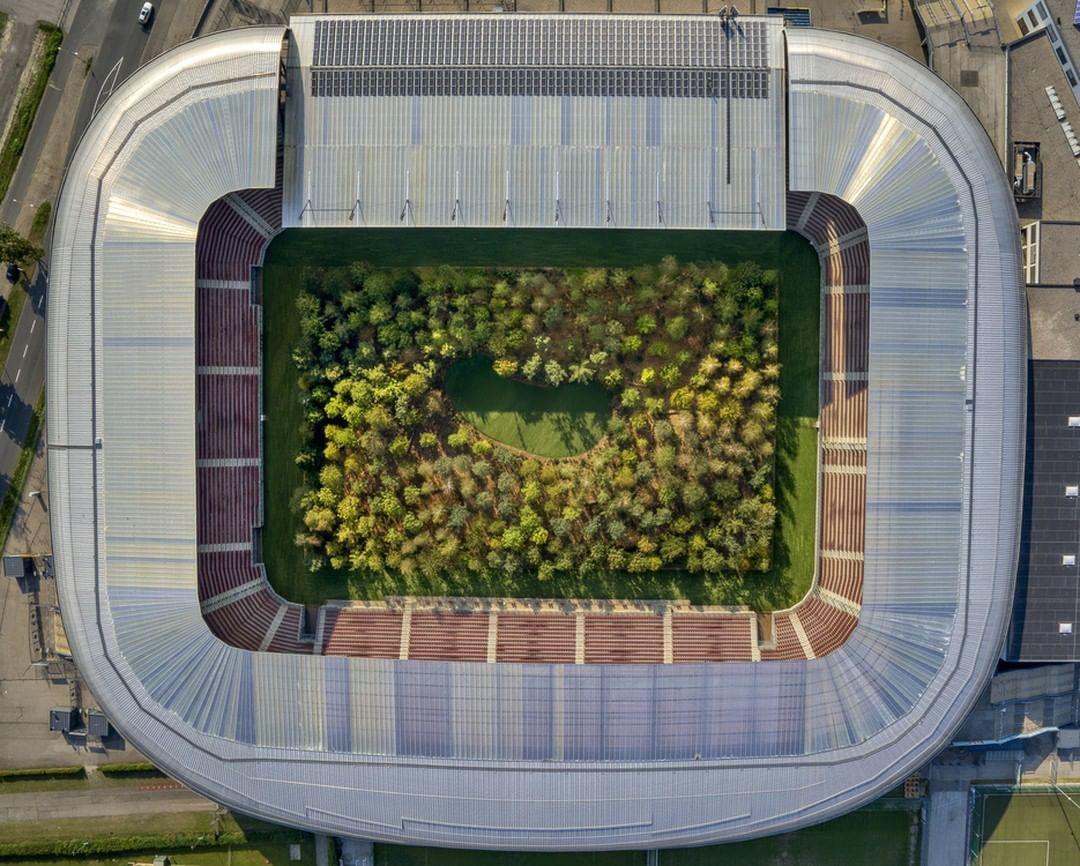 інсталіція Клауса Літтманна ліс на стадіоні_6