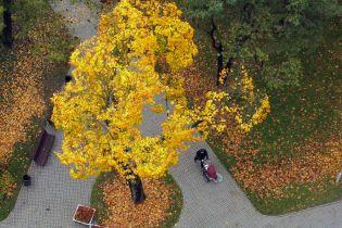 Погода на вторник: в Украине до +28 градусов, местами грозы