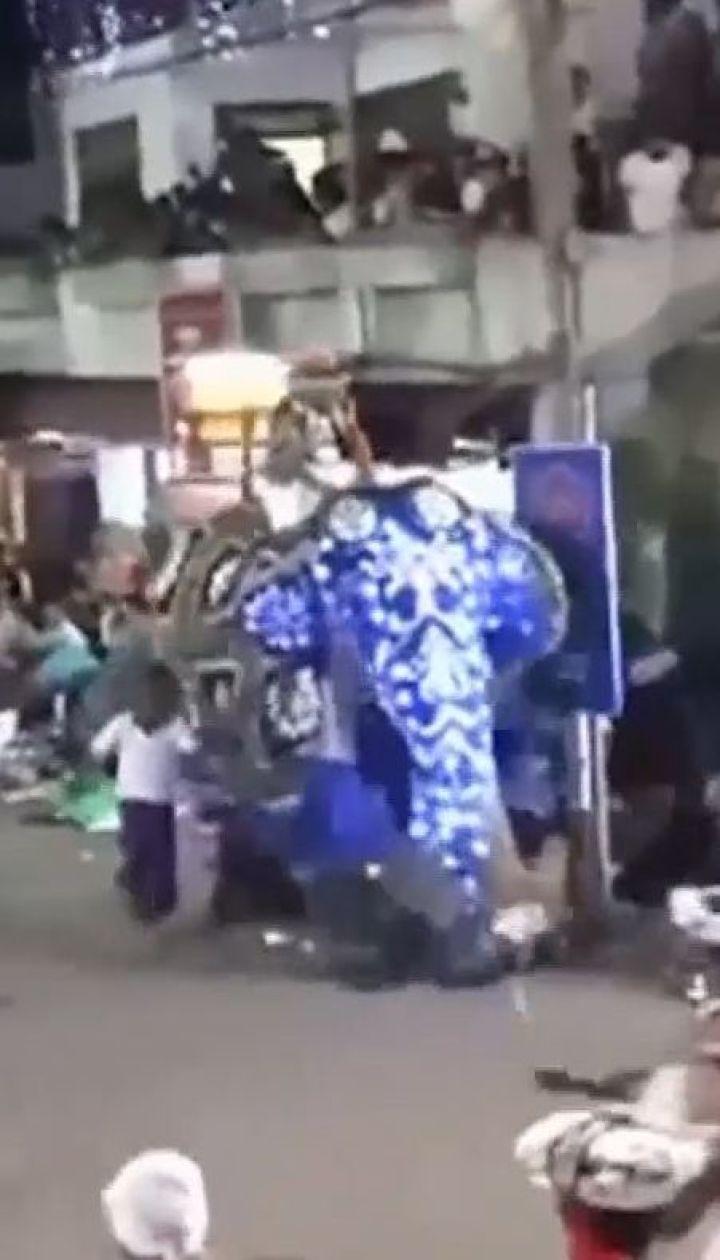Во время ночного карнавала в столице Шри-Ланки два слона потоптали людей